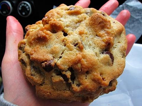 Chocolate-Chip-Walnut-Cookie.