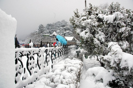 snowfall-in-manali.